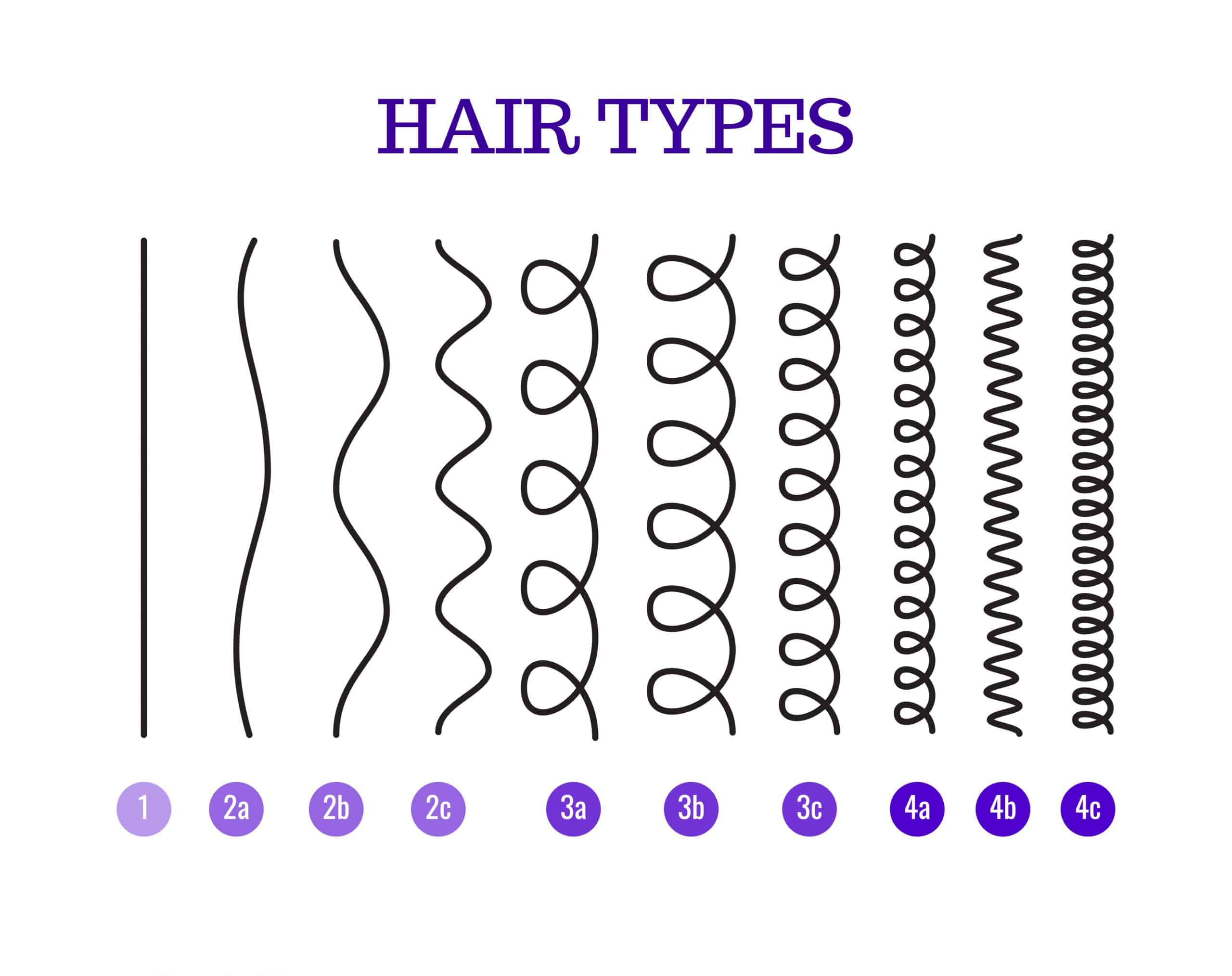 drawing of different hair types