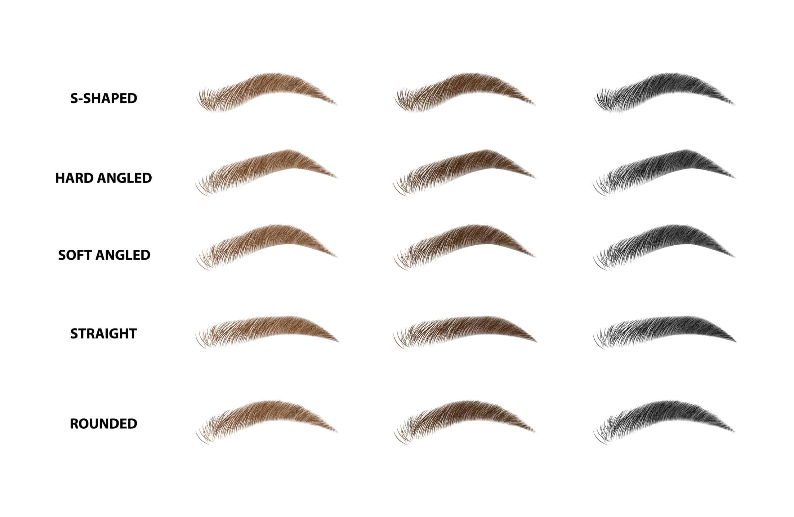 variety eyebrow shapes