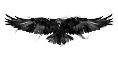 The History and Meaning of the Raven Tattoo