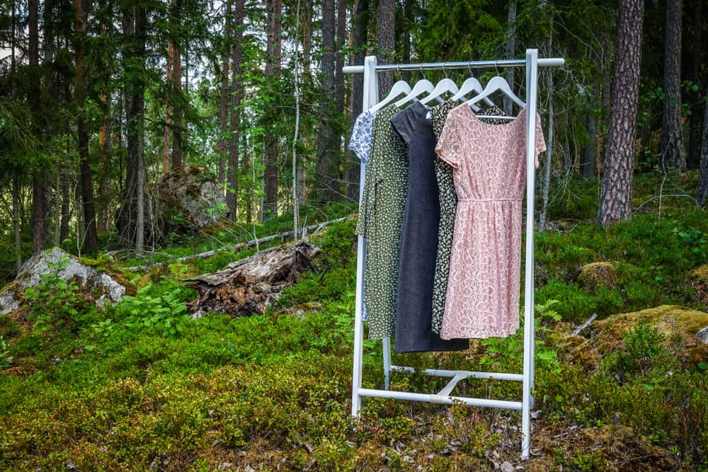 clothes hanger in forest