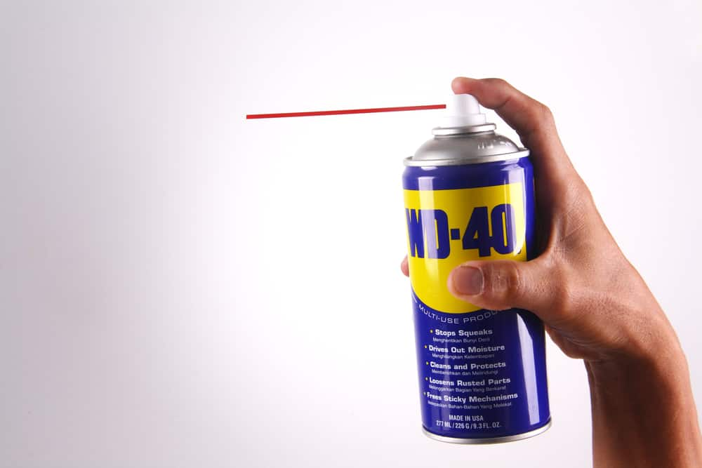 hand holding WD-40