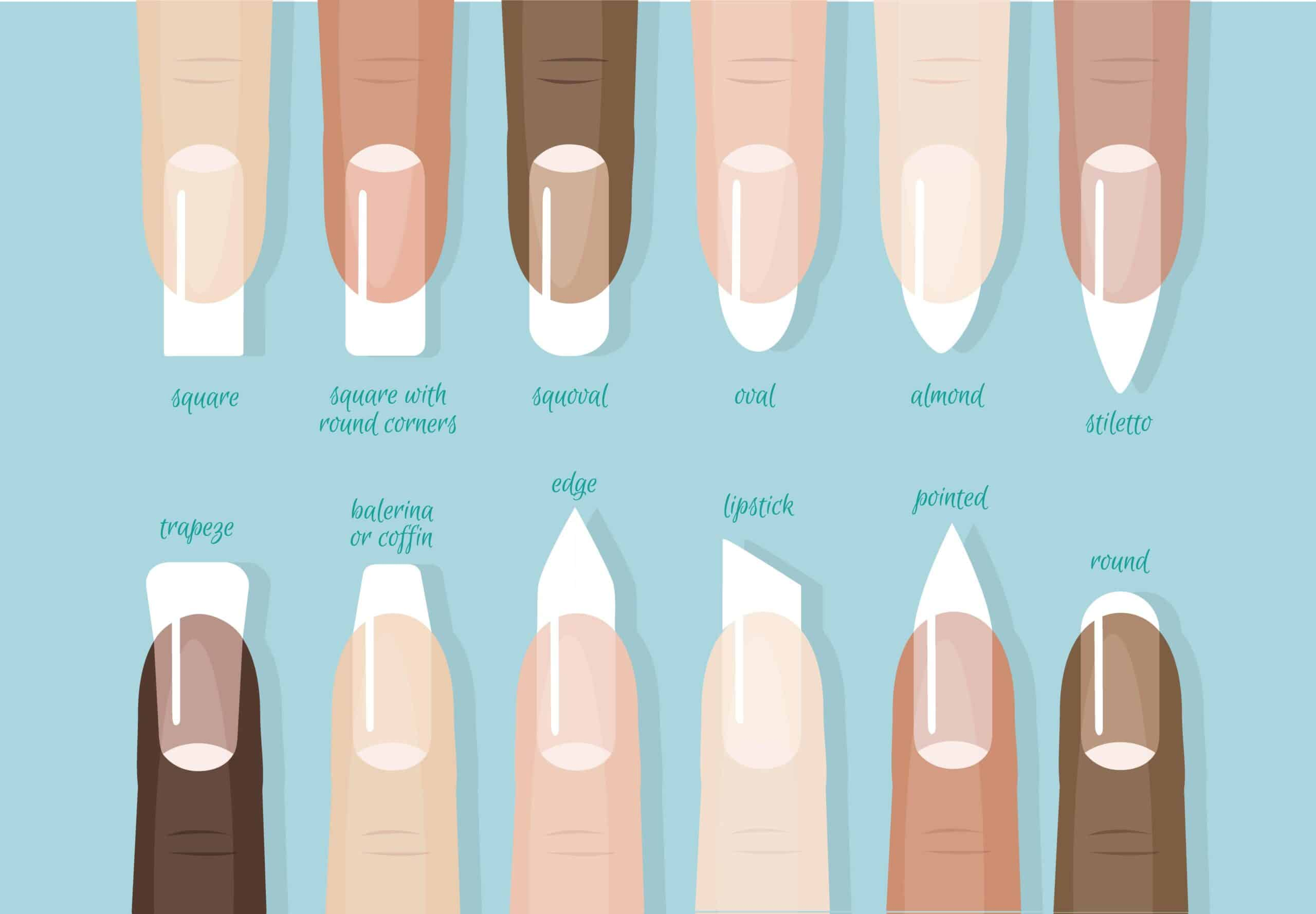 illustration of different nail shapes