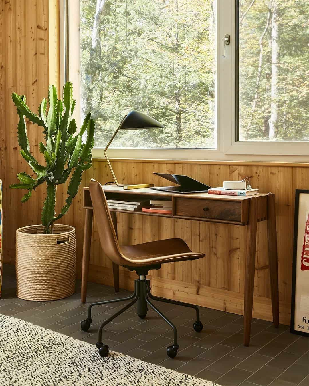 A small home office with a cactus plant