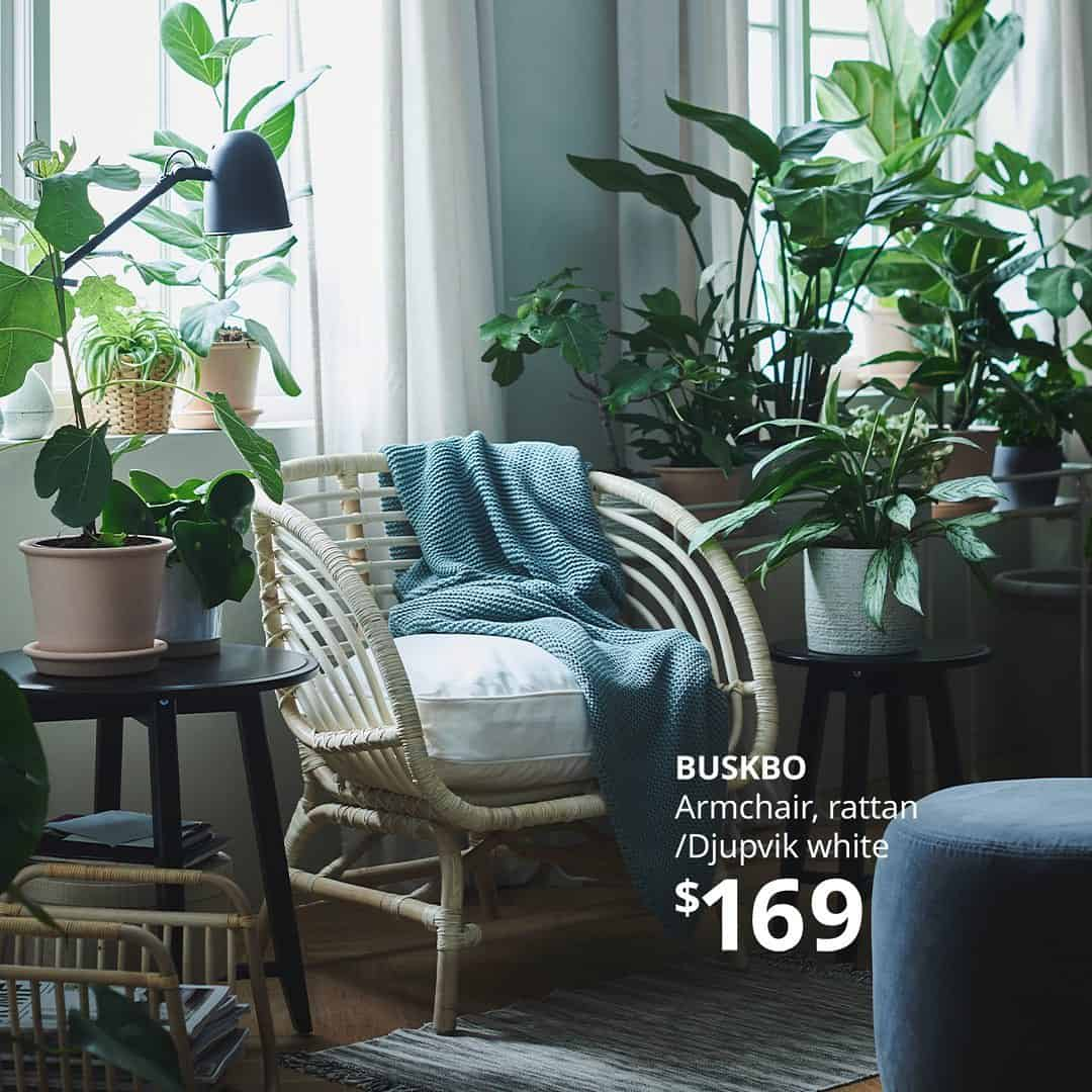 A white chair surrounded by plants