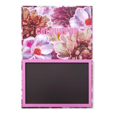 Colourpop Magnetic Palette